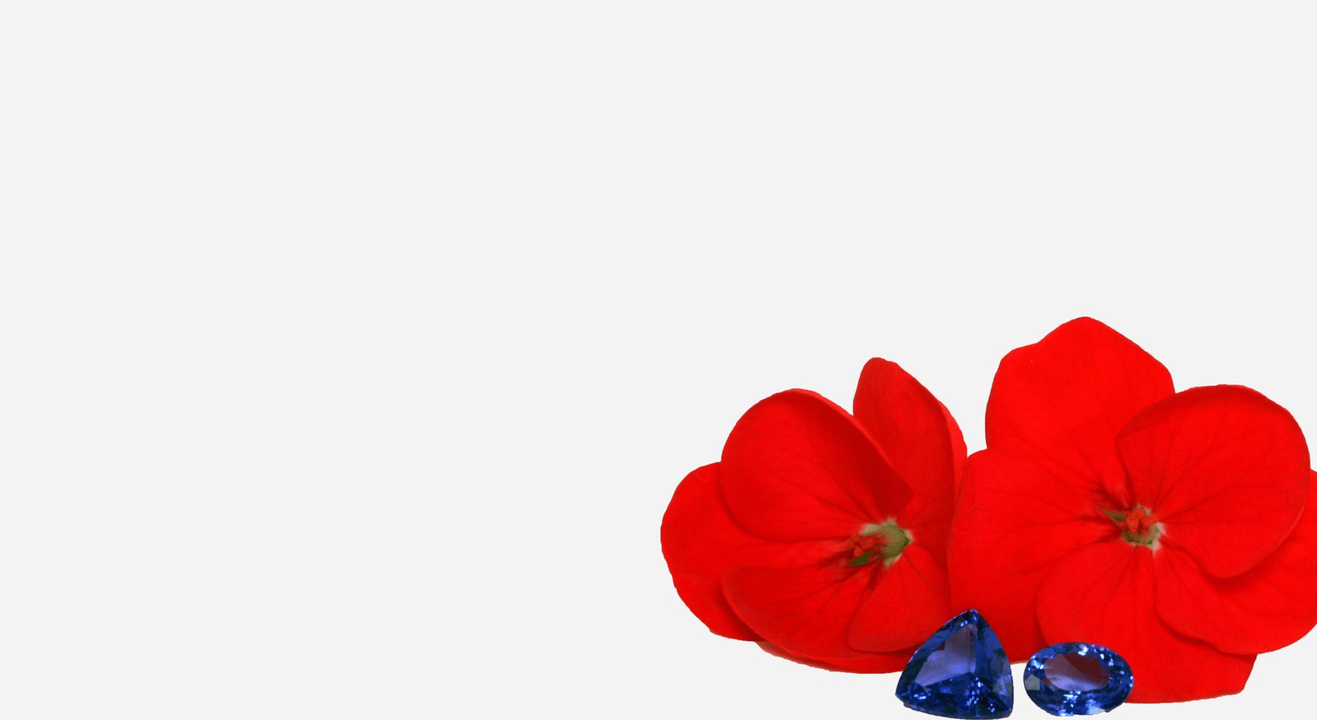 tansanit-blume