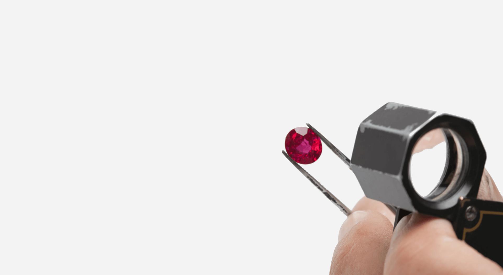 rubin-lupe