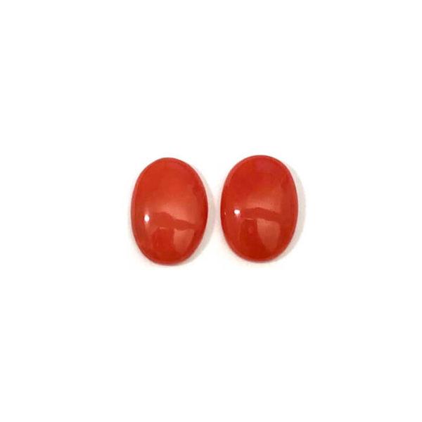 Koralle-Orange-Rot